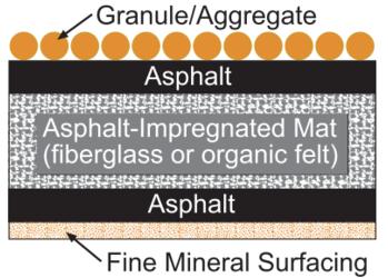 The cross section of an asphalt shingle.